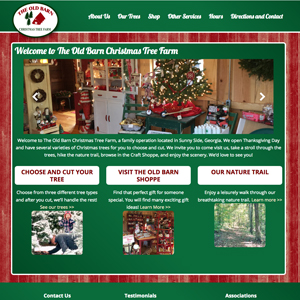 screenshot for new website in Sunnyside Ga